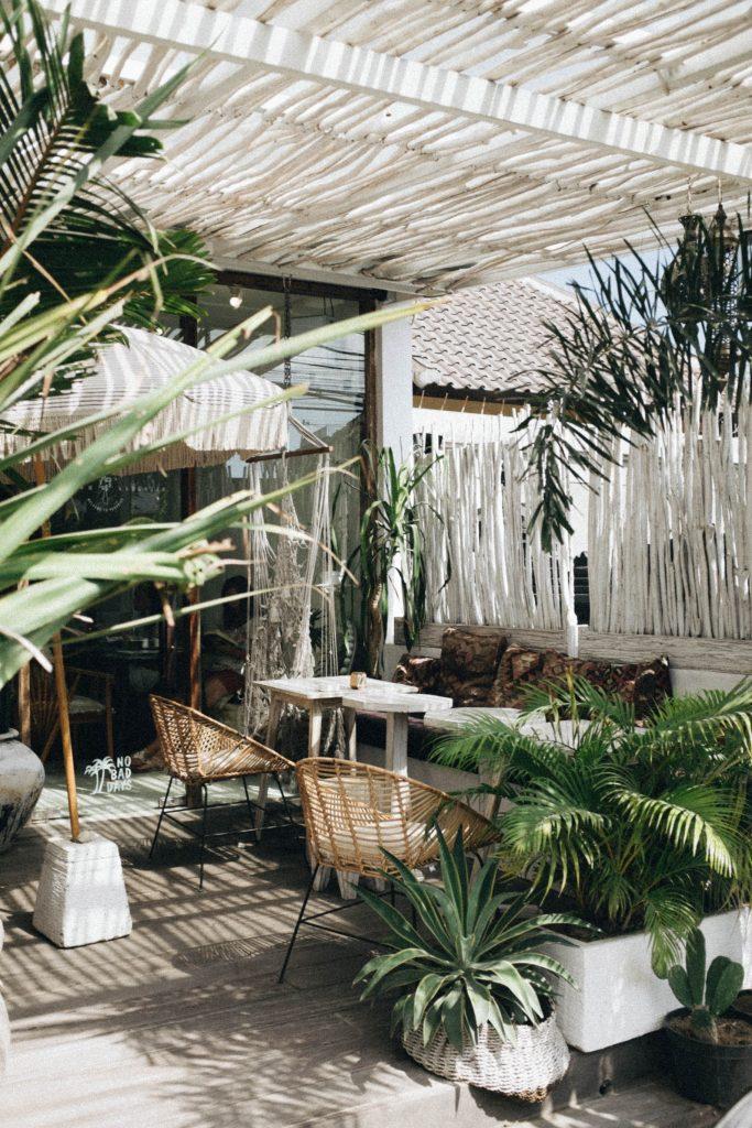 cour extérieure decorée avec de nombreuses plantes