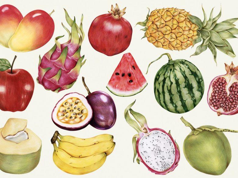 illustration antique fruits exotiques