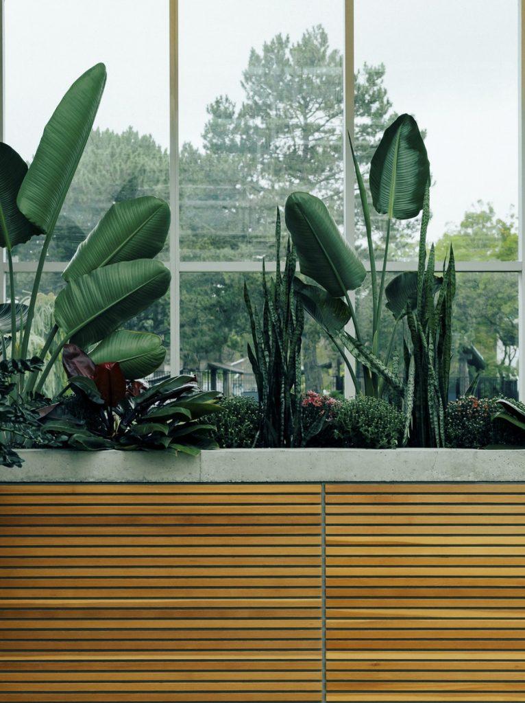 plantes jardin botanique