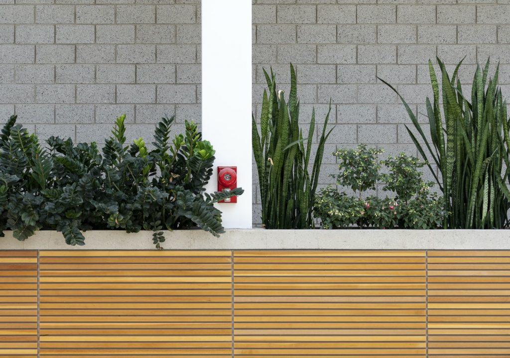 plantes et alarme incendie